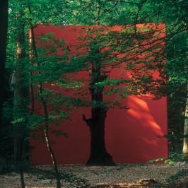 Gloria Friedmann, Le Monument du Chêne