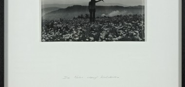 Barbara & Michael Leisgen, Mimetische Landschaft - Paysage Mimétique, 1972-1973 Collection 49 Nord 6 Est – Frac Lorraine, Metz (FR) Photo : Rémi Villaggi © B & M. Leisgen