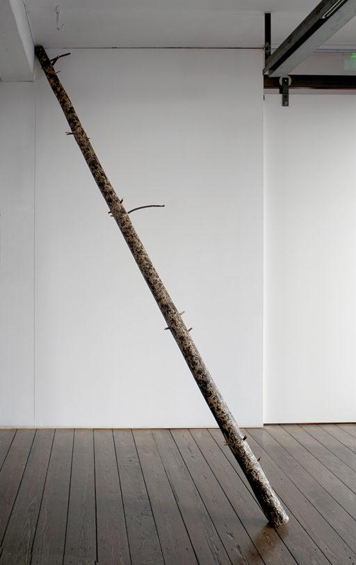 François Génot, Xylo, 2015 / Épicéa blanchi et encre à taille douce, dimensions variables