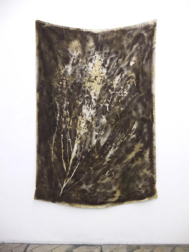 François Génot, herbarium3 , 2014, peinture aérosol sur objet trouvé, dimensions variables.