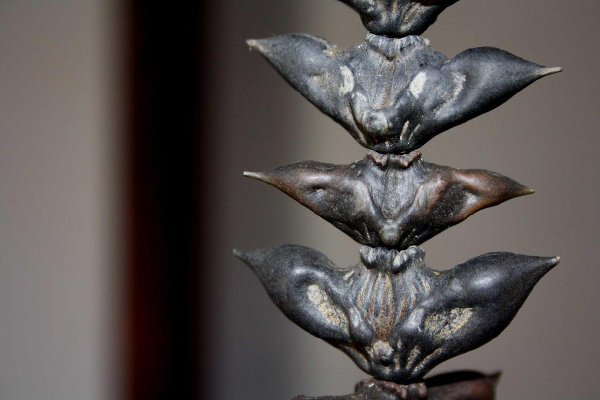 """Léa Barbazanges – Vue de l'exposition """"maemi"""" présentée à l'Espace international du CEAAC du 19 juin au 19 juillet 2015"""
