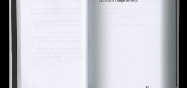 It was pretty nice today 2013 Livres reliés © Lauren Thorson Commande réalisée par la Science Gallery dans le cadre de l'exposition « STRANGE WEATHER », Dublin, Irlande, 2014