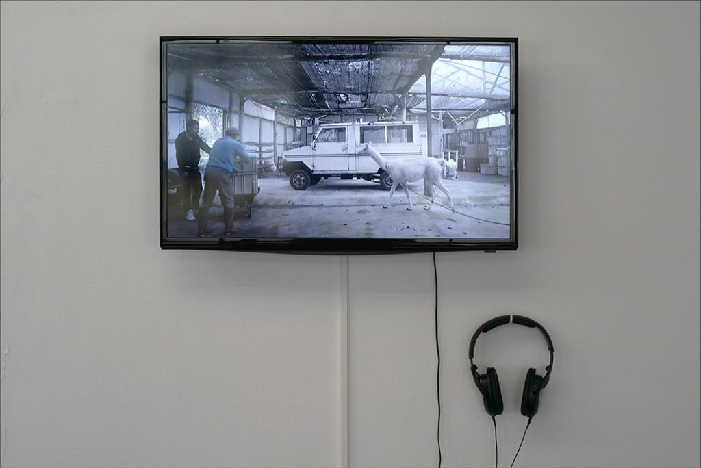 Ultralocal (vue d'exposition), Adrian Balseca, Medio Camino, 2014, crédit photo: R.Görgen