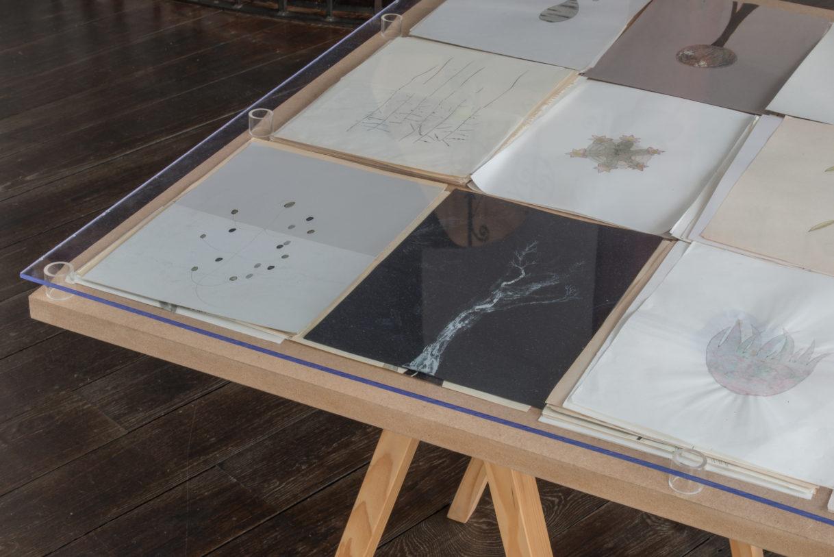 Parallèle / Regionale 19, vue d'exposition, ©K.Stöber
