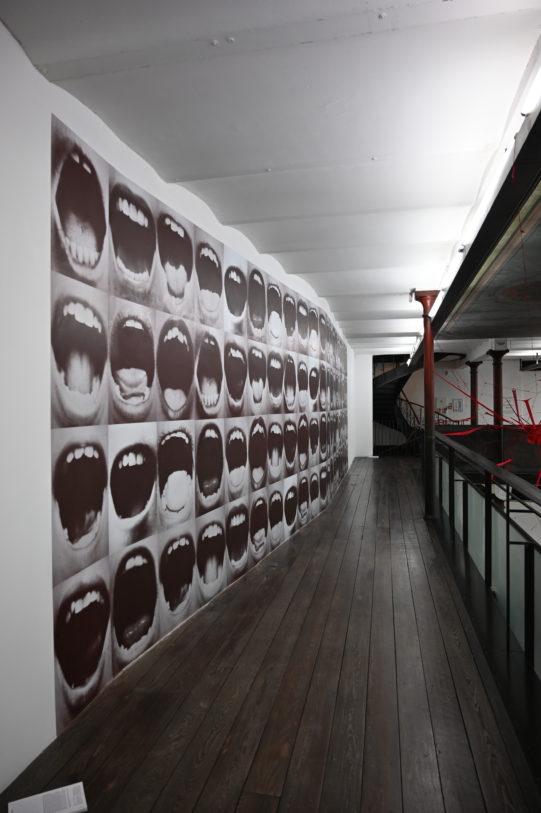 À gauche : Graciela Sacco, Bocanada, 2015, 12 affiches couleurs, 70 x 50 cm, 49 Nord 6 Est – Frac Lorraine © M. & C. Garavelli Sacco.