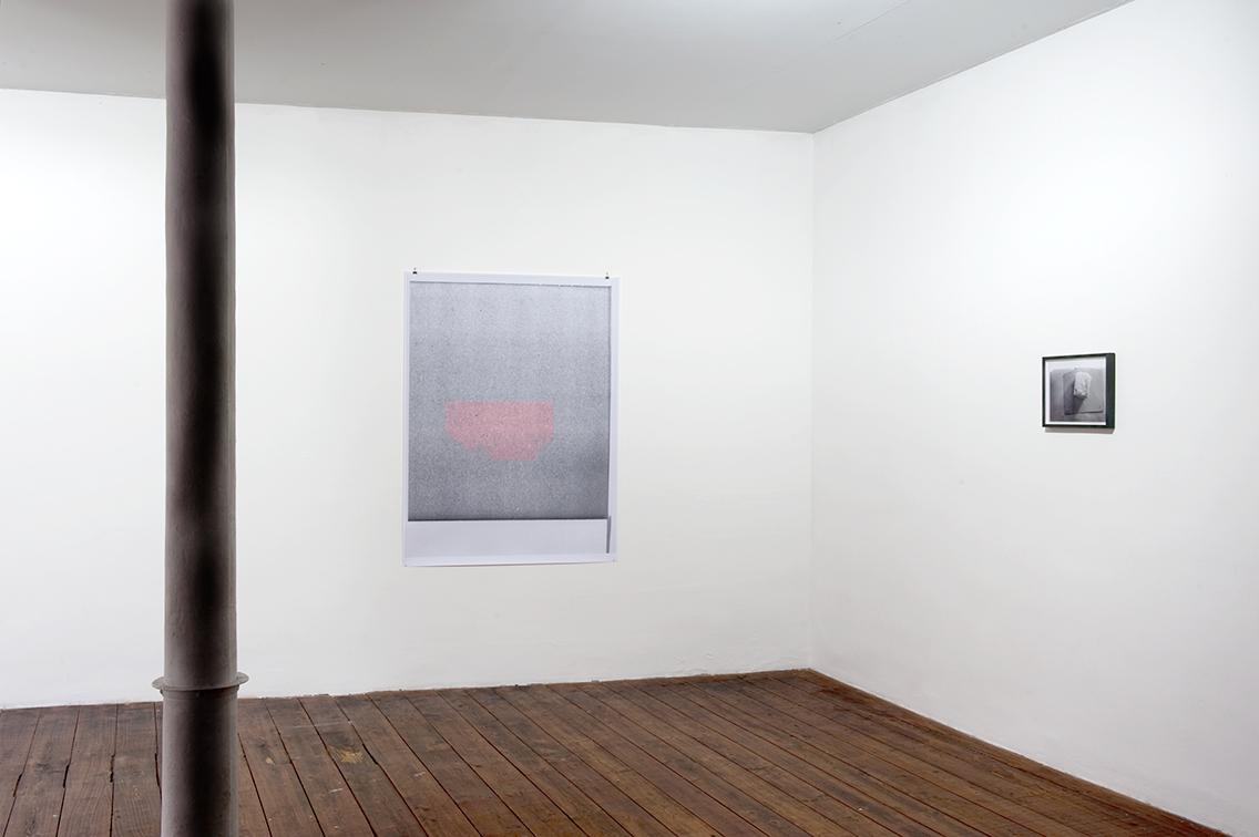 Marieta Chirulescu – Sans titre (big print 3), 2008 et Sans titre (brinza/Käse), 2008 – Photo : Klaus Stöber