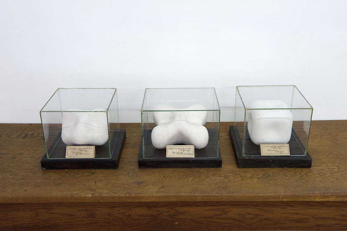 3 modèles en plâtres reproduisant des modules de Thomas Young – Photo : Klaus Stöber