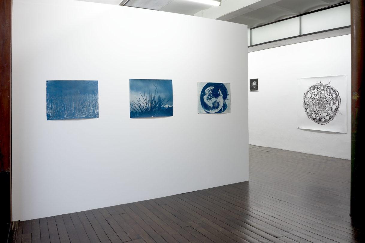 Mariann Blaser, ensemble d'œuvres, 2020 © photo: R.Görgen