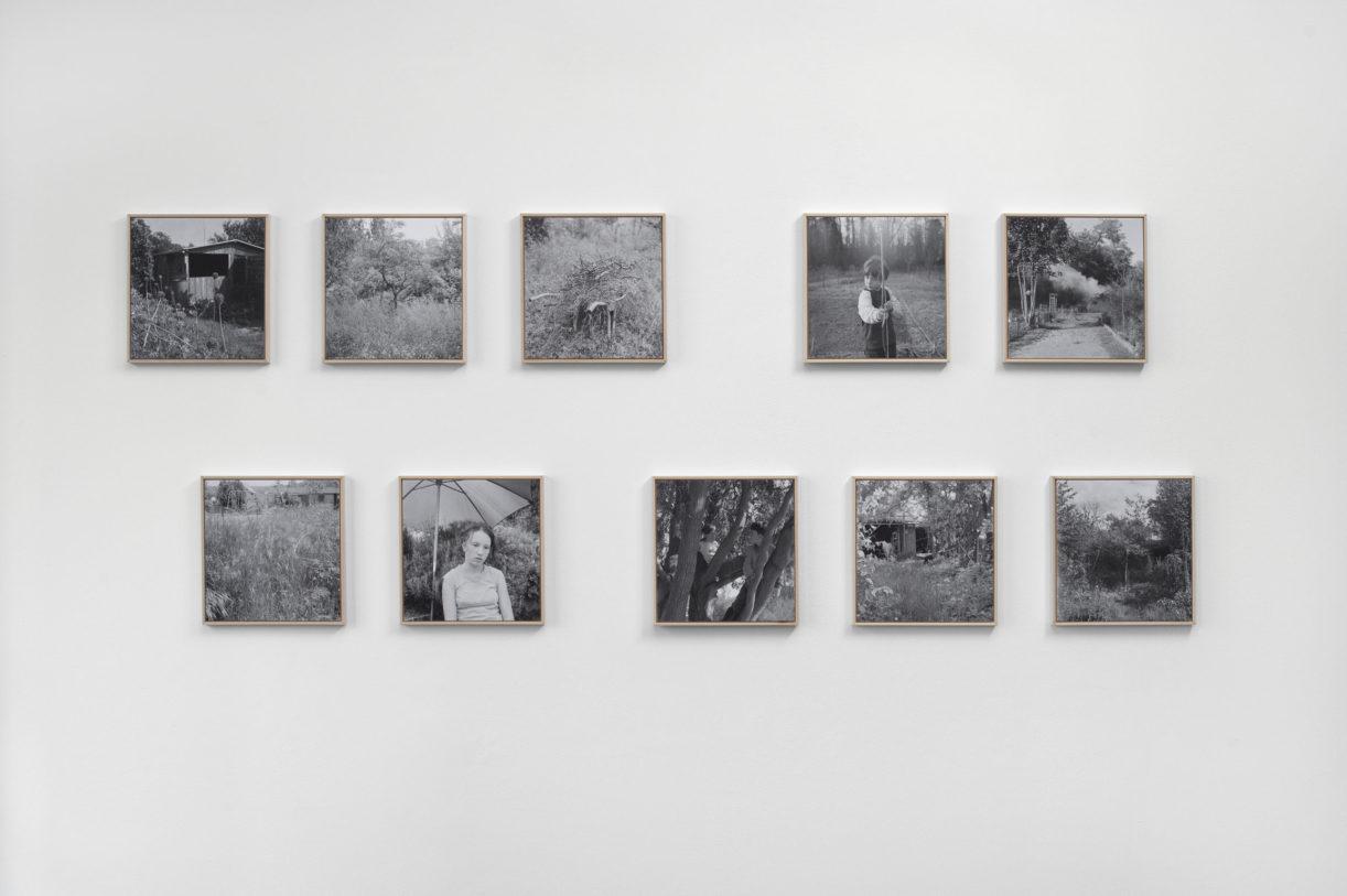 Anne Immelé, Parcelle n°100, Les jardins du Riesthal, série en cours © photo: R. Görgen.