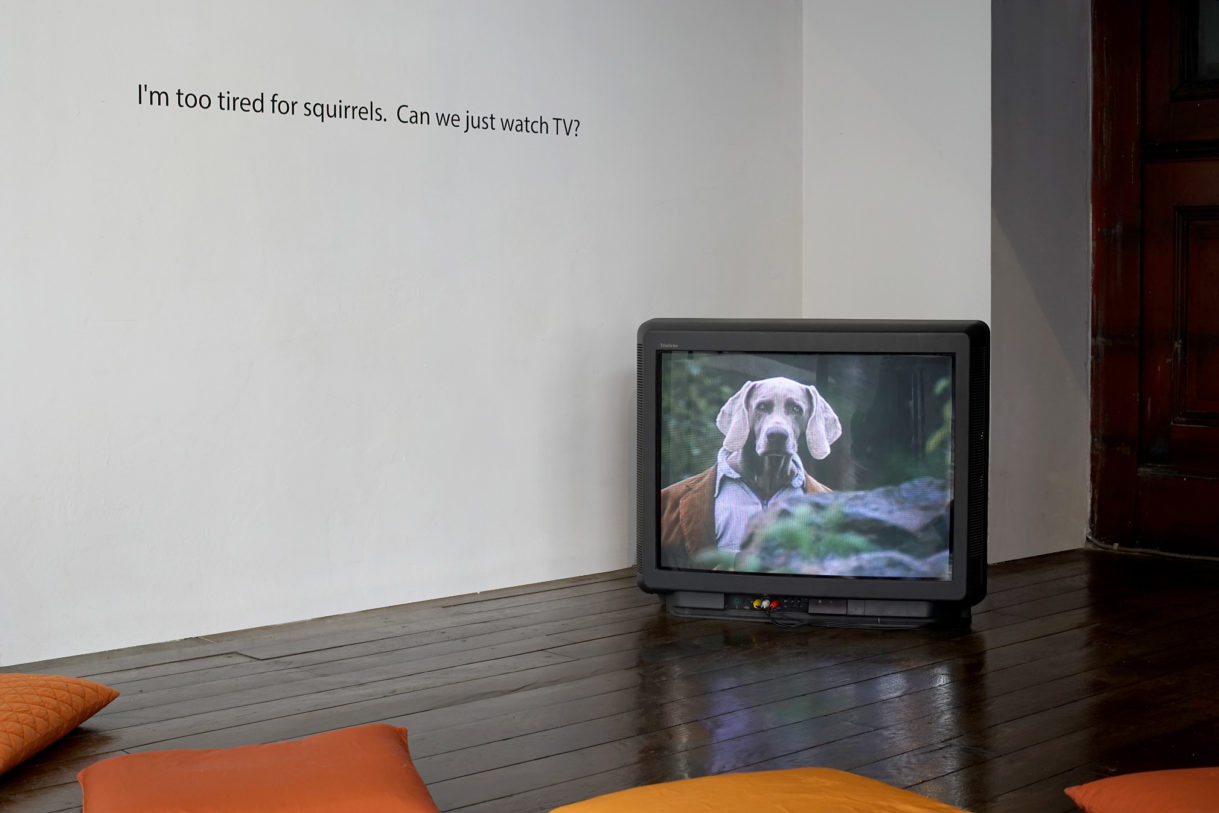 William Wegman, The Hardly Boys in Hardly Gold, 1995 – Joseph Grigely, Blueberry surprise (détail), 2013 © photo: R. Görgen