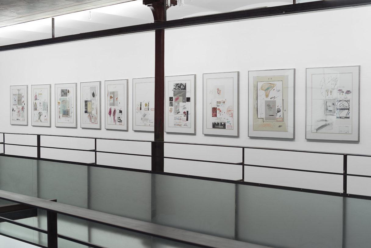 """Cy Twombly, """"Natural history Part I, Mushrooms"""", vue de l'exposition """"Nouer le reste"""", CEAAC, 2021, ©R. Görgen"""