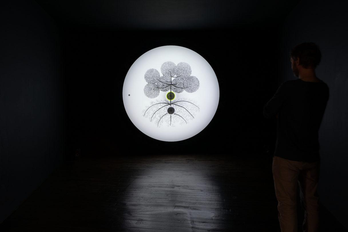 """Younès Rahmoun, """"Habba"""", vue de l'exposition """"Nouer le reste"""", CEAAC, 2021, ©R. Görgen"""